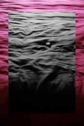 bedscape1