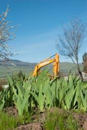 excavator_friday